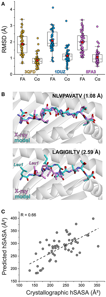 Frontiers | Structure Based Prediction of Neoantigen