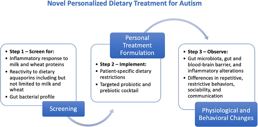 Self Scoring Autism Screen Overlooks >> Frontiers Novel Personalized Dietary Treatment For Autism