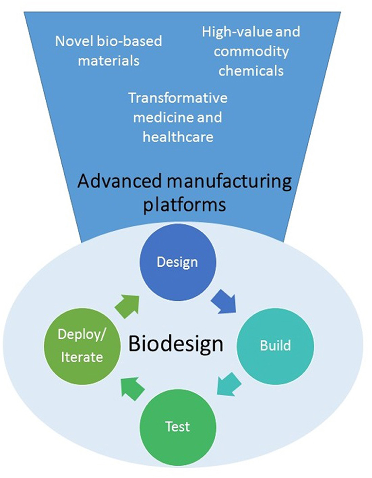 Frontiers Future Trends In Synthetic Biology A Report Bioengineering And Biotechnology