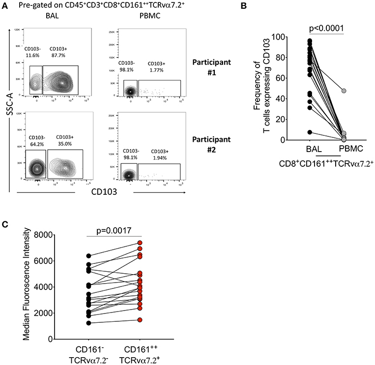 Frontiers   Airway CD8+CD161++TCRvα7 2+ T Cell Depletion