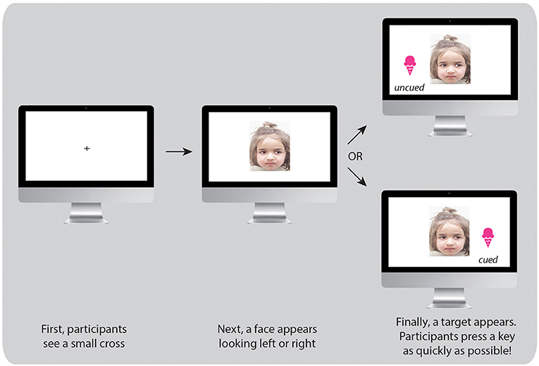 Figure 2 - Sequence of the cueing task to measure social attention.