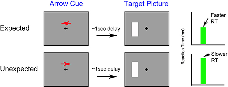 Figure 1 - How does attention influence reaction time? The four gray boxes represent computer monitors.