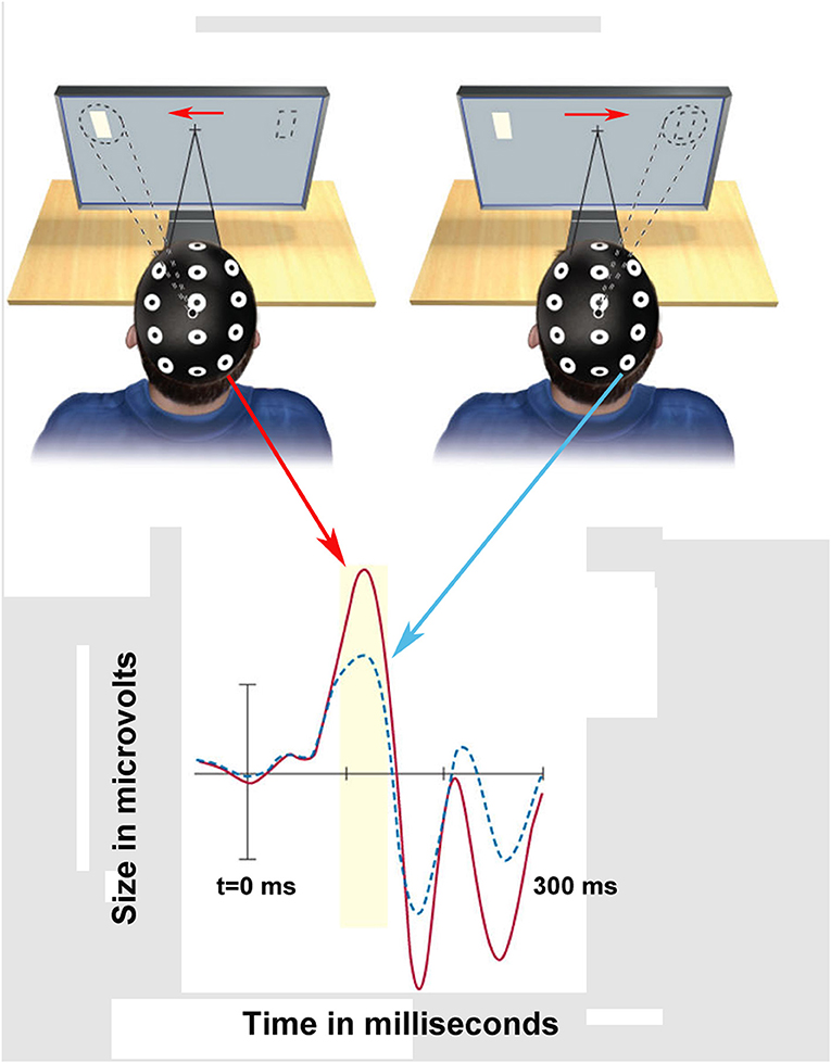 Figure 2 - Measuring brain waves during an attention task.