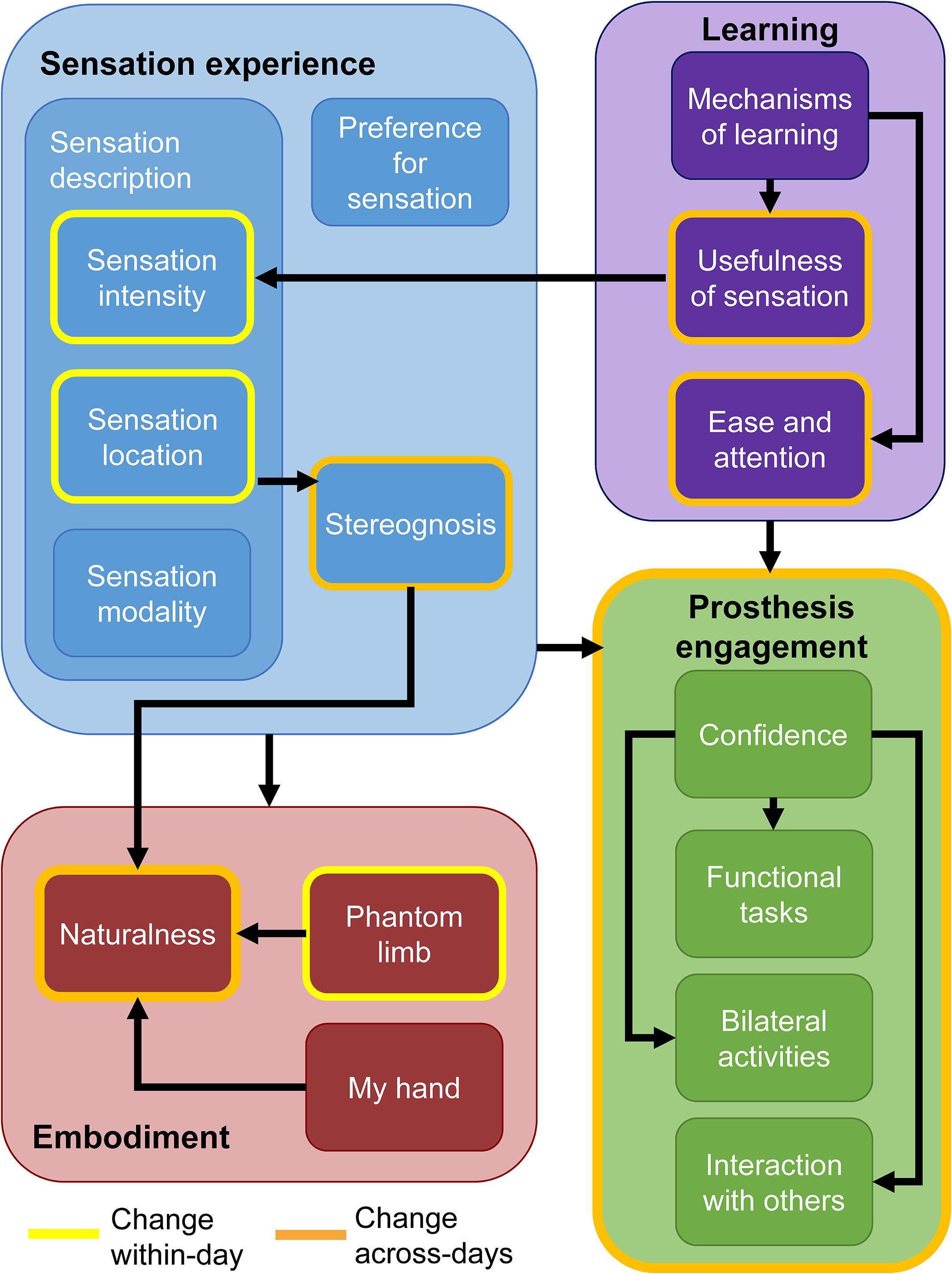 Frontiers | Learning of Artificial Sensation Through Long