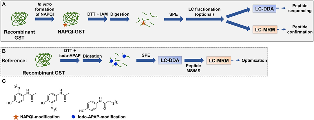 Frontiers | Liquid Chromatography-Tandem Mass Spectrometry