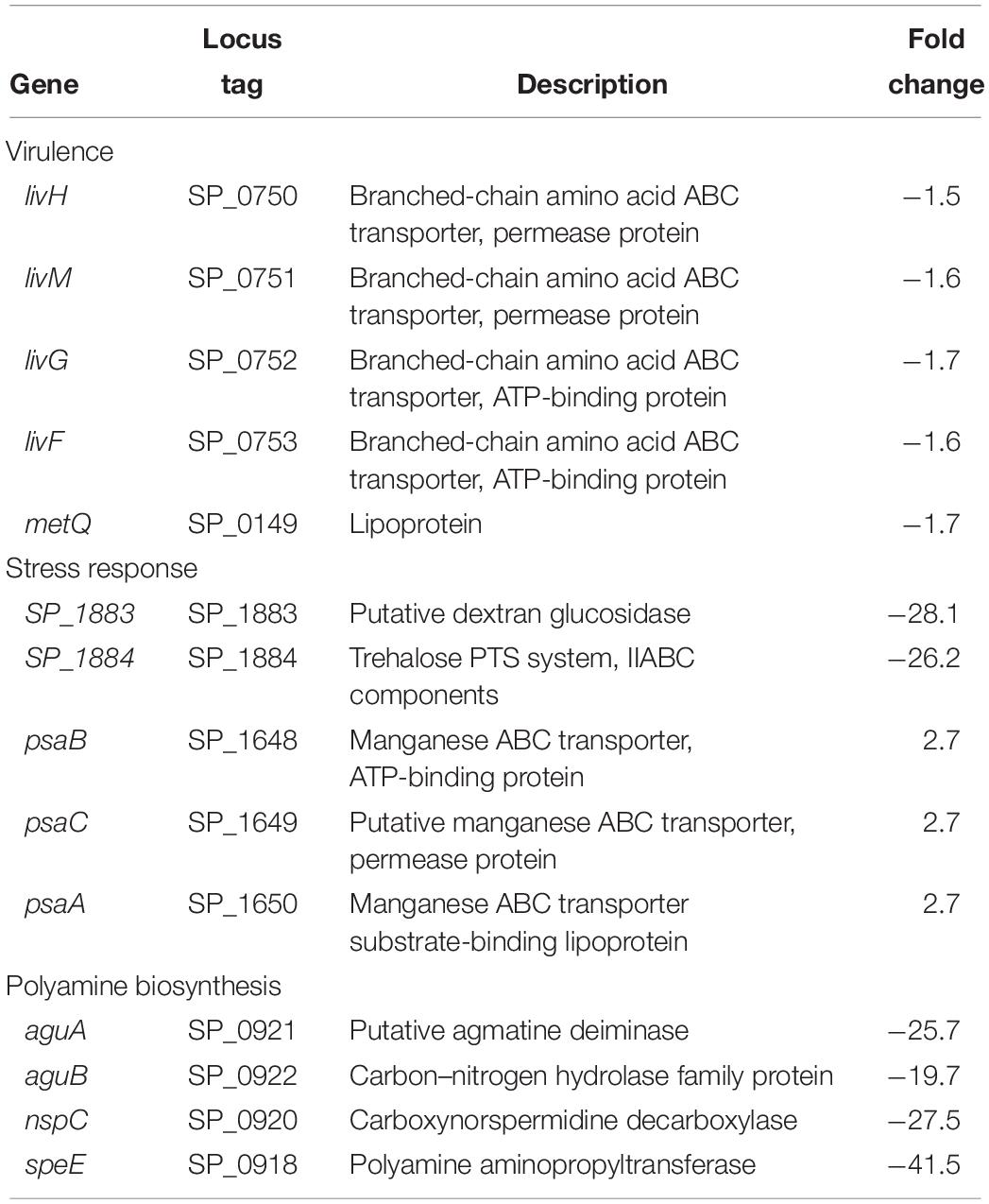 Frontiers | Polyamine Synthesis Effects Capsule Expression