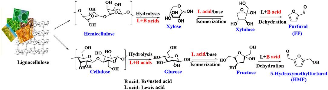 Frontiers | Heterogeneous Catalytic Upgrading of Biofuranic
