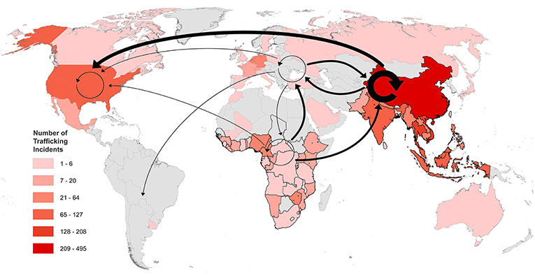 Figure 2 - The countries involved in pangolin trafficking from 2010 to 2015, based on the number of trafficking incidents per country (indicated by the color-coded areas listed in the key), and pangolin trafficking routes between continents (amended from Heinrich et al. [4]).