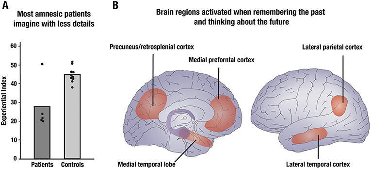 Figure 2 - Brain regions important for remembering the past are also active when imagining the future.
