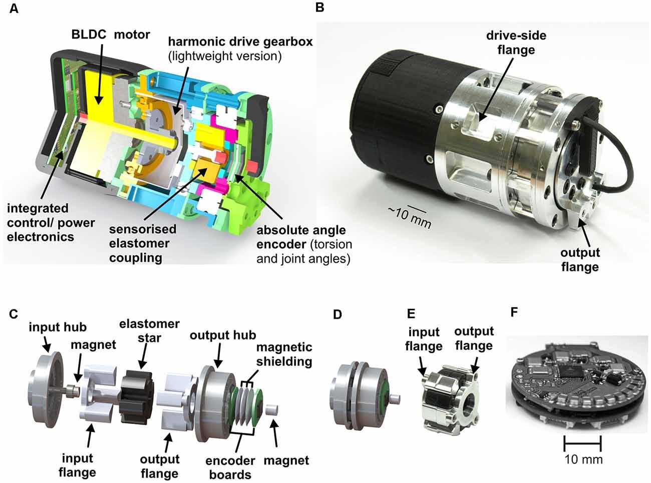 Frontiers   Integrative Biomimetics of Autonomous Hexapedal