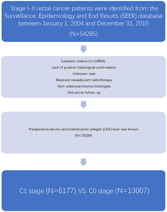 Frontiers Association Of T Stage And Serum Cea Levels In Determining Survival Of Rectal Cancer Medicine