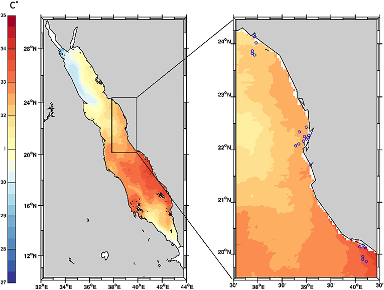 Figure 3 - Coral black band disease survey sites in the Red Sea.