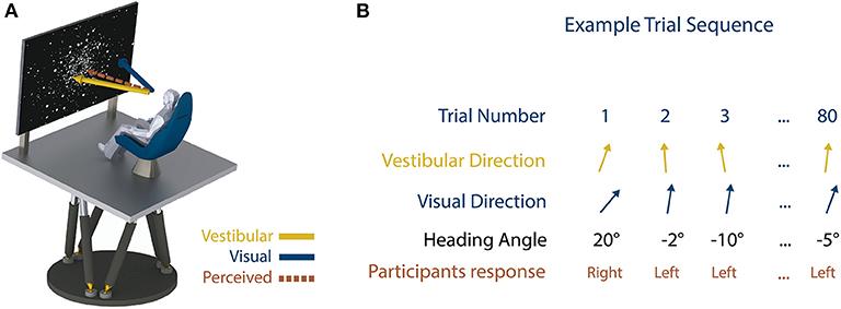 Figure 2 - (A) Experiment setup; motion platform and visual display.