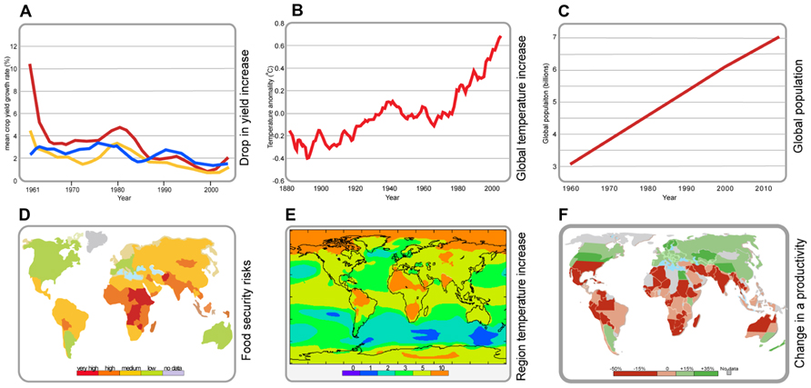 Frontiers | Plant tolerance to high temperature in a