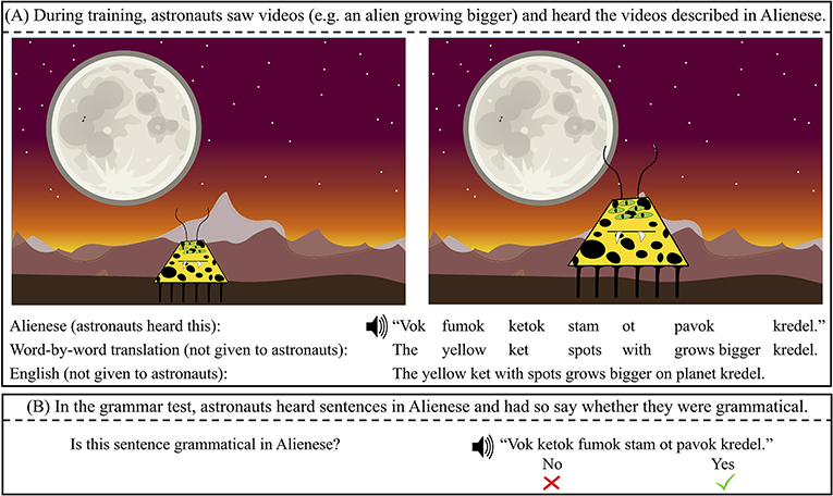 Figure 2 - (A) Two pictures from a video that astronauts were shown to learn about the aliens and their language.