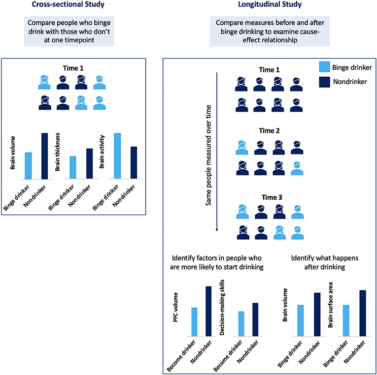 Figure 2 - Cross-sectional and longitudinal studies.