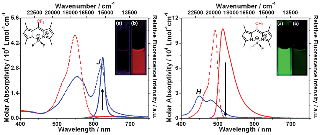 Fluorescence quenching of protonated β