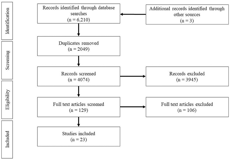 Frontiers Do Gross And Fine Motor Skills Differentially Contribute To Language Outcomes A Systematic Review Psychology