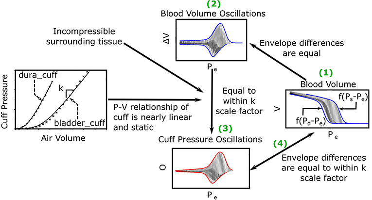 Frontiers Formulas To Explain Popular Oscillometric Blood Pressure Estimation Algorithms Physiology