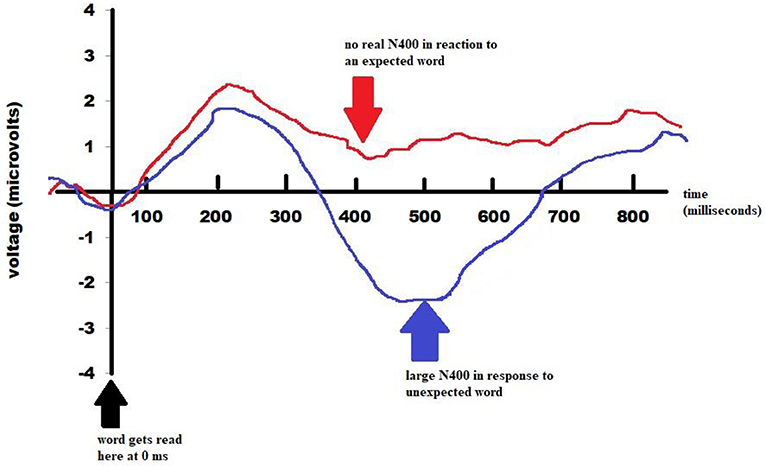 Figure 1 - The type of semantic anomaly can affect the brain's N400 response.