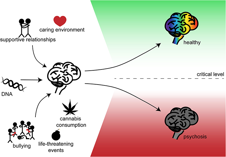 Figure 1 - DNA and the environment affect your mental health.