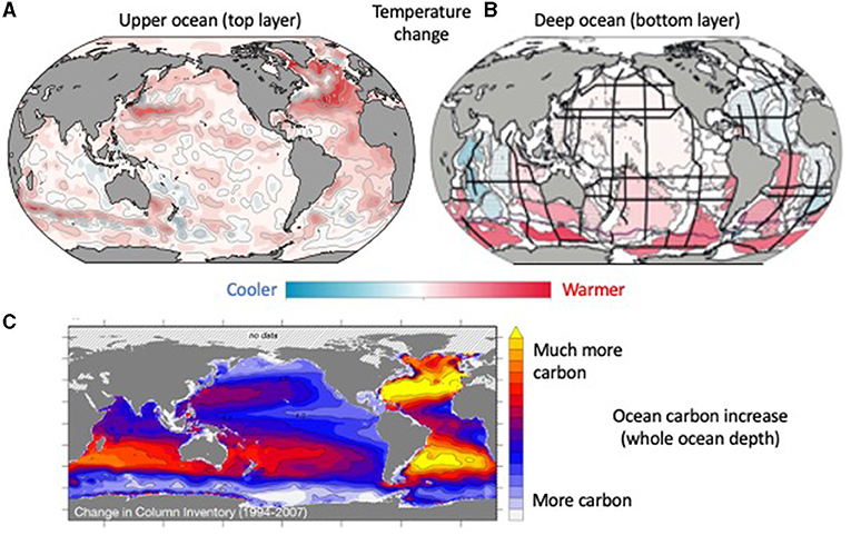 Figure 1 - (A) The top layer of the ocean has warmed (red colors) based on our temperature measurements over 30 to 40 years.