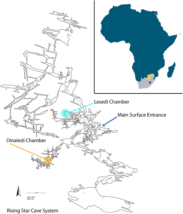 Figure 1 - Location of the Cradle of Humankind in Africa (upper right).