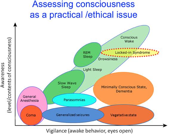 Consciousness test of map David Hawkins'
