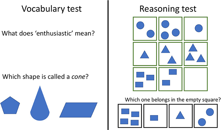 Figure 3 - An example of a vocabulary test (left) and a reasoning test (right) used to study mutualism of cognitive abilities.