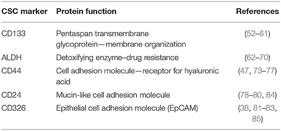 Frontiers Novel Therapeutic Strategies For Ovarian Cancer Stem Cells Oncology