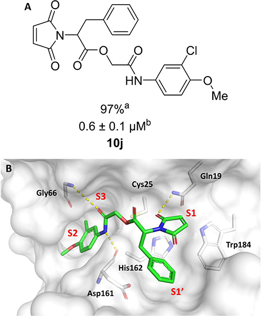Structure-Based And Molecular Modeling Studies