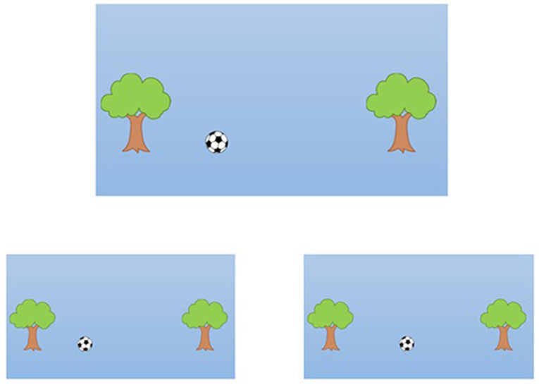 Figure 3 - Sample spatial scaling task.