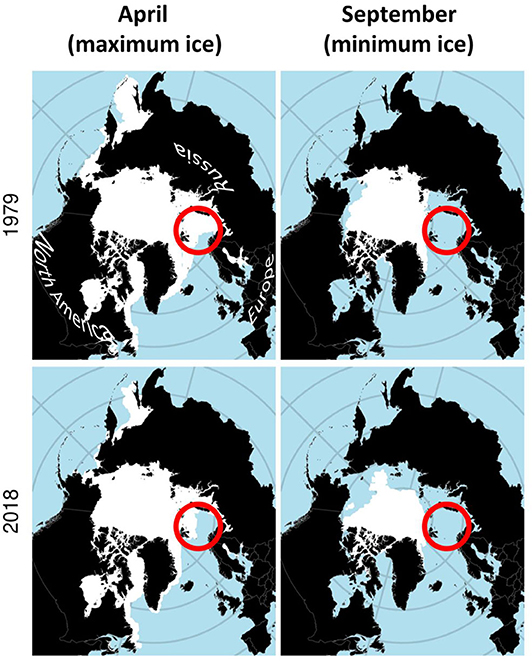 Figure 1 - Changes in sea-ice extent (white areas) in the Arctic between 1979 and 2018.
