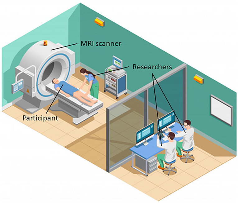 Figure 3 - Researchers use MRI scanners to study people's brains.