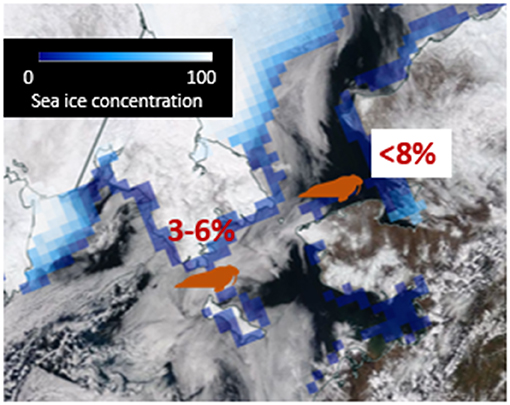 Figure 2 - Data from several sources can be combined to give a more complete picture of sea ice.