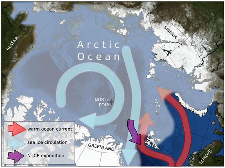 Figure 1 - A map of the study area, with a drift track of the research ship Lance, sea ice movement patterns, and warm ocean currents indicated with arrows (see legend).