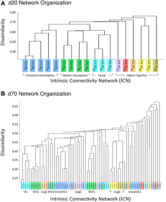 Frontiers | ICA model order selection of task co-activation networks