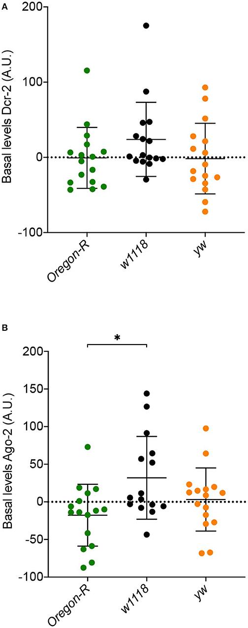 Argonauten Protein wie zur Gewichtsreduktion