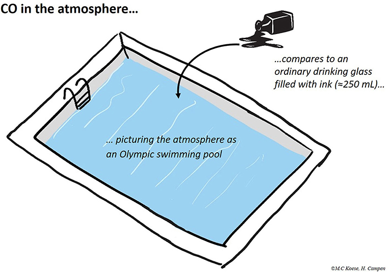 Figure 1 - All trace gases together make up <1% of the atmosphere.