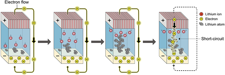 Figure 2 - When lithium ions and electrons meet and react in an uncontrolled way, lithium atoms are formed and they pile up on each other, forming lithium wires.
