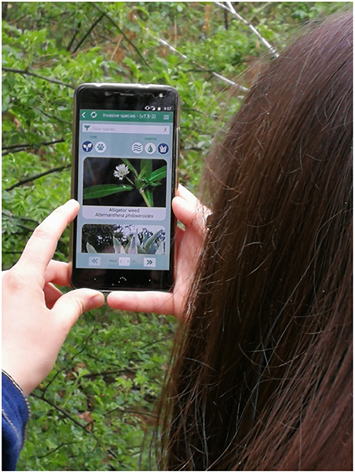 Figure 3 - The smartphone app Invasive Alien Species Europe can be used by everyone that wants to help in monitoring invasive alien species of Union Concern within Europe.
