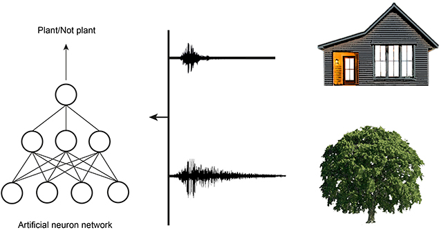 Figure 4 - Objects with different structures produce echoes with different characteristics.