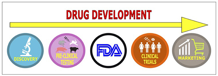 Figure 1 - The drug development pipeline has multiple stages, starting from drug discovery to marketing for human use.