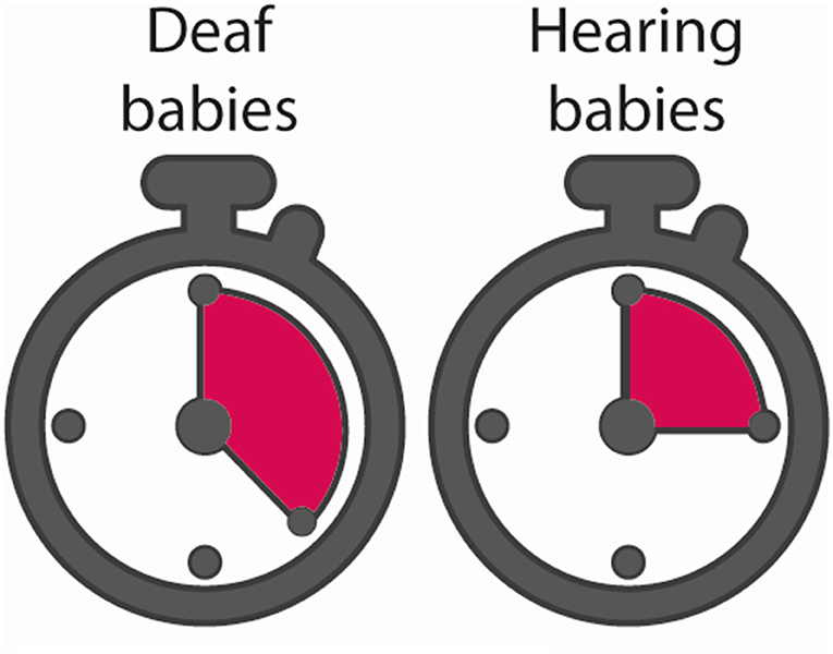 Figure 2 - The two stopwatches illustrate that, in our experiment, the deaf babies (left) took longer to lose interest in the objects pictured on the screen than the hearing babies did.