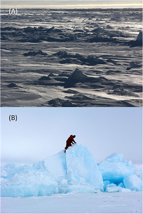 Figure 2 - The pack ice of the Arctic and Antarctic Oceans is a varied environment that can be quite hostile to life.