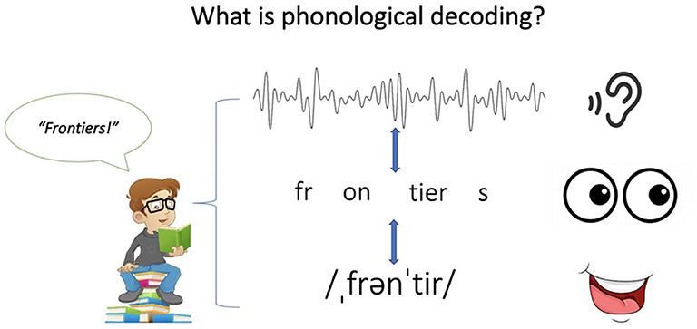 "Figure 1 - How does phonological decoding work to help us read words like ""frontiers""?"