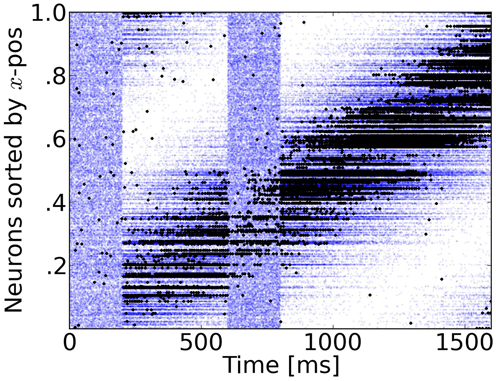 Figure 4: *Rasterplot of input and output spikes.* The raster plot from excitatory neurons is ordered according to their position. Each input spike is a blue dot and each output spike is a black dot. While input is scattered during blanking periods (Figure 1), the network output shows shows some tuned activity during the blank (compare with the activity before visual stimulation). To decode such patterns of activity we used a maximum-likelihood estimation technique based on the tuning curve of the neurons.