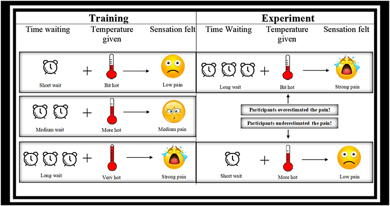 Figure 1 - During training (left), participants waited for a short, medium, or long time and then felt a temperature that was either a bit hot, more hot, or very hot.