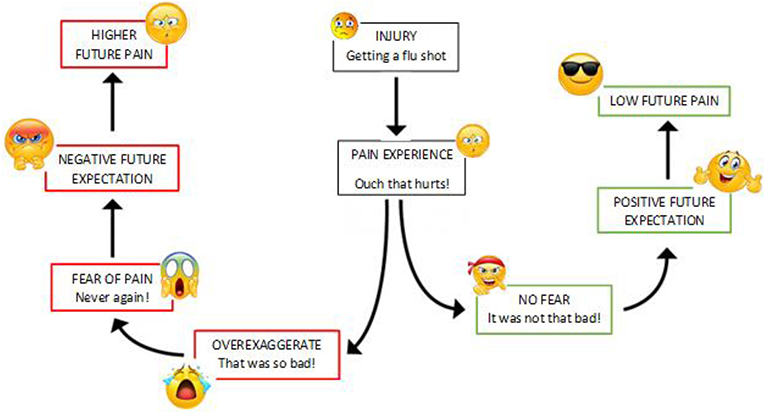 Figure 2 - How does pain expectation work?