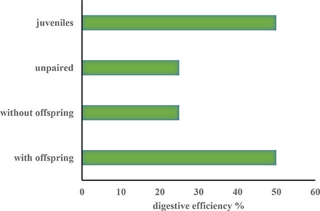 Figure 2 - Differences in percentages of digestive efficiency between geese from different social categories.